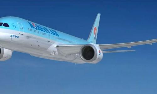 Korean Air Dreamliner Simulator | FDS 787 Success Story